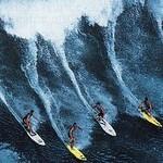 Surf die Welle Zavial Algarve Quinta Al Gharb